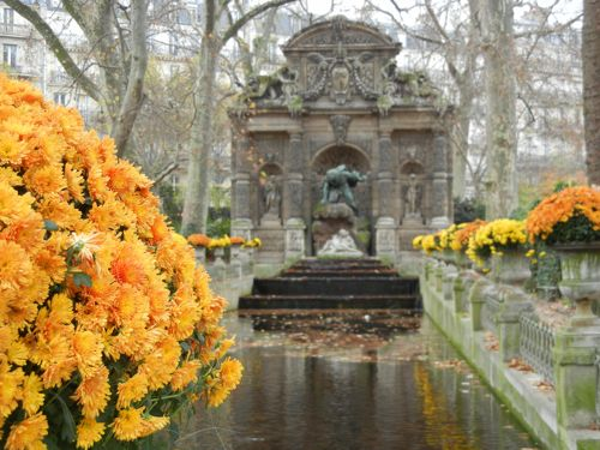 Jardin du Luxembourg copyright http://www.onlineflowergarden.com